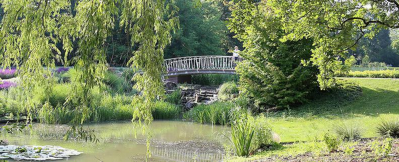 Gartenanlage im MEDIAN Zentrum für Verhaltensmedizin Bad Pyrmont Klinik für Psychosomatik