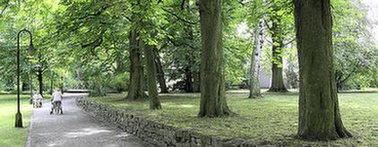 Parkanlage in der Nähe der MEDIAN Klinik Bad Tennstedt