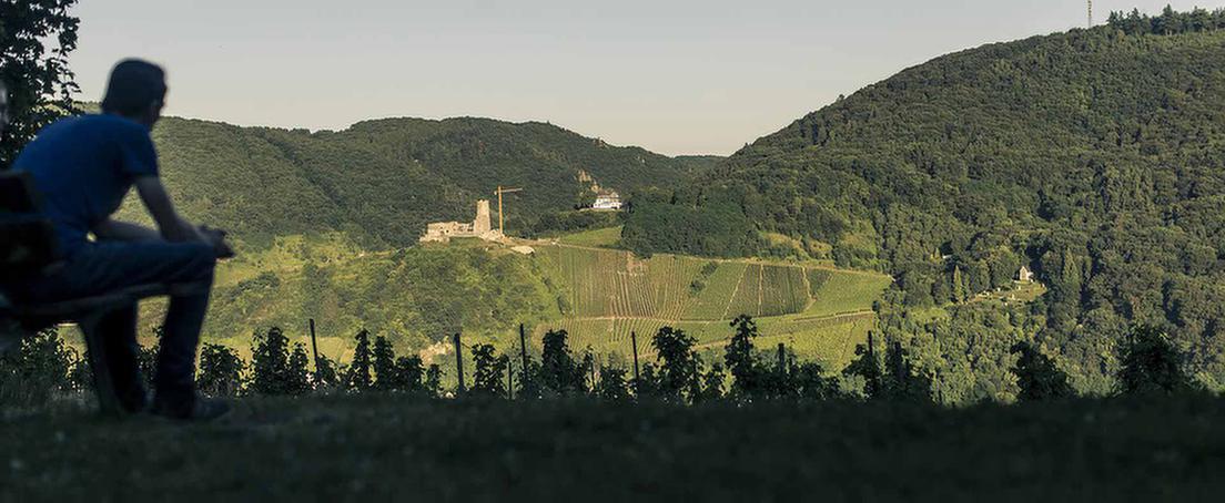 MEDIAN Bernkastel-Moselhoehe Freizeit und Umgebung