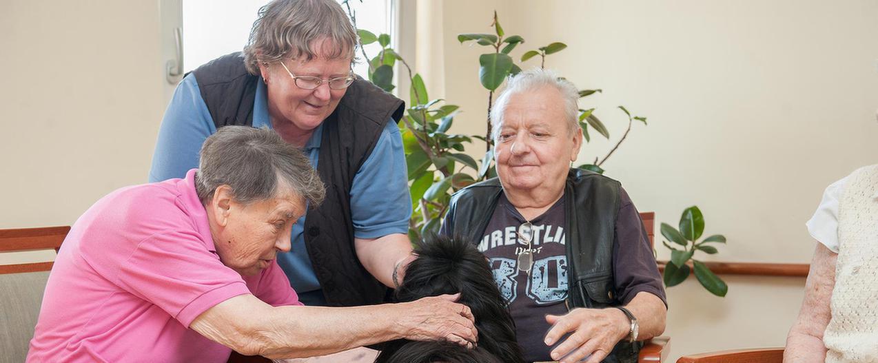Patienten streicheln einen Hund im MEDIAN Wohn- und Pflegeheim Pfalzstift Bad Dürkheim